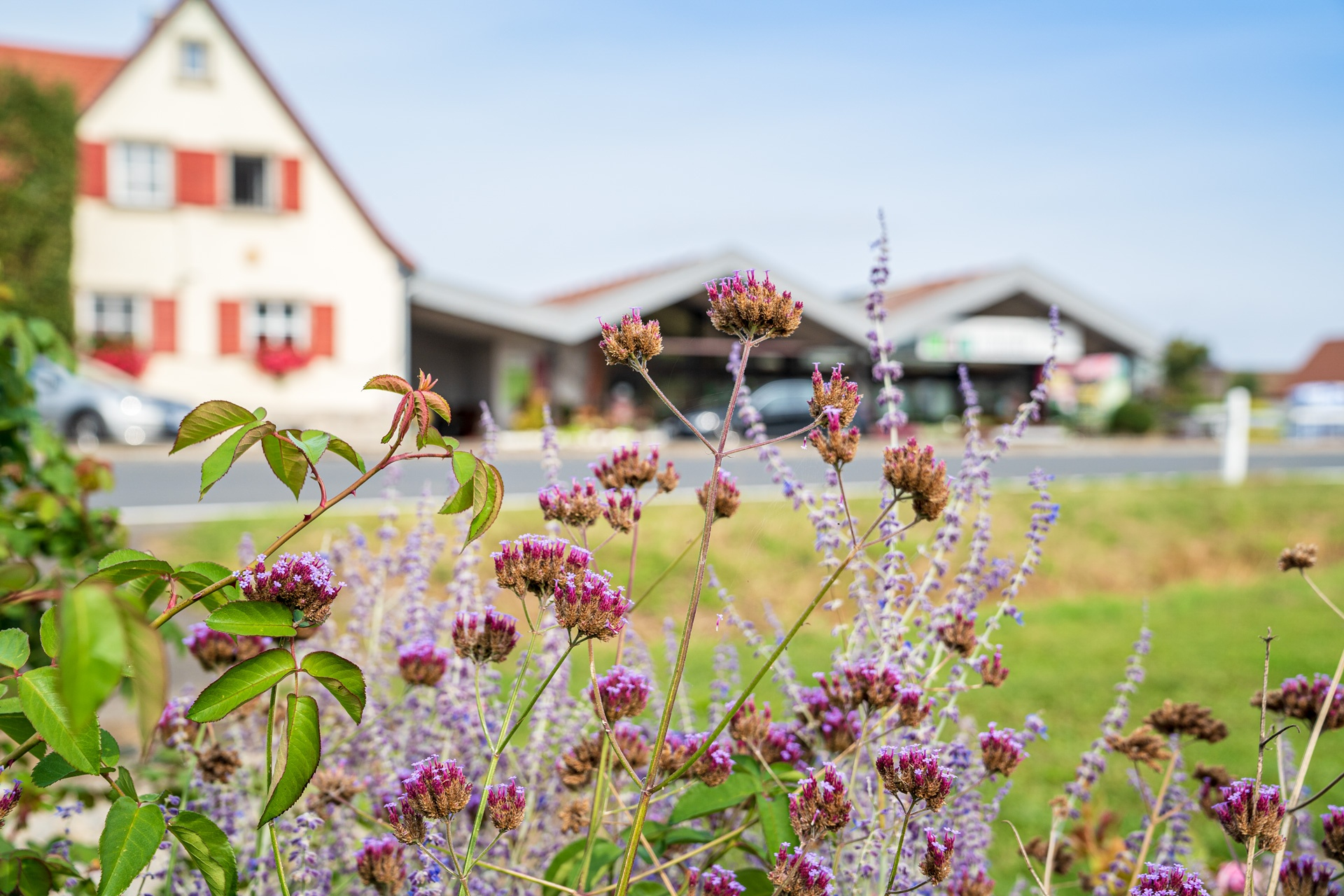 Gärtnerei Schunke in Hüttenheim