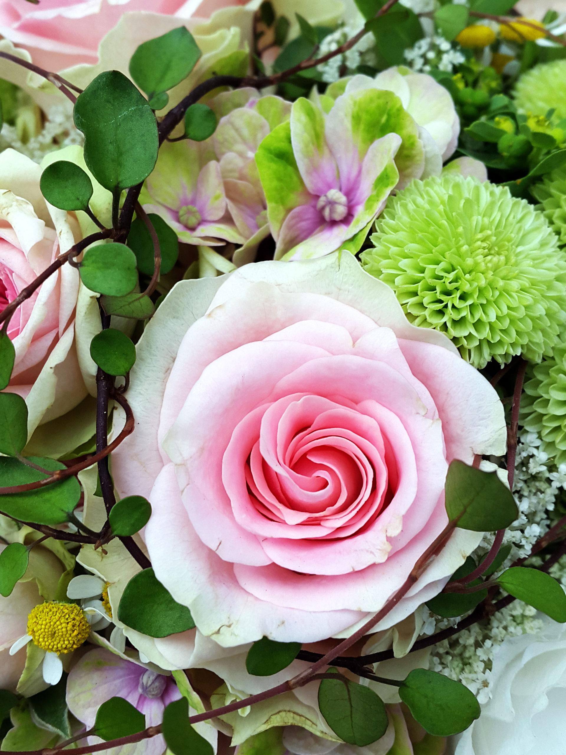 Grün Und Rosa Im Strauß