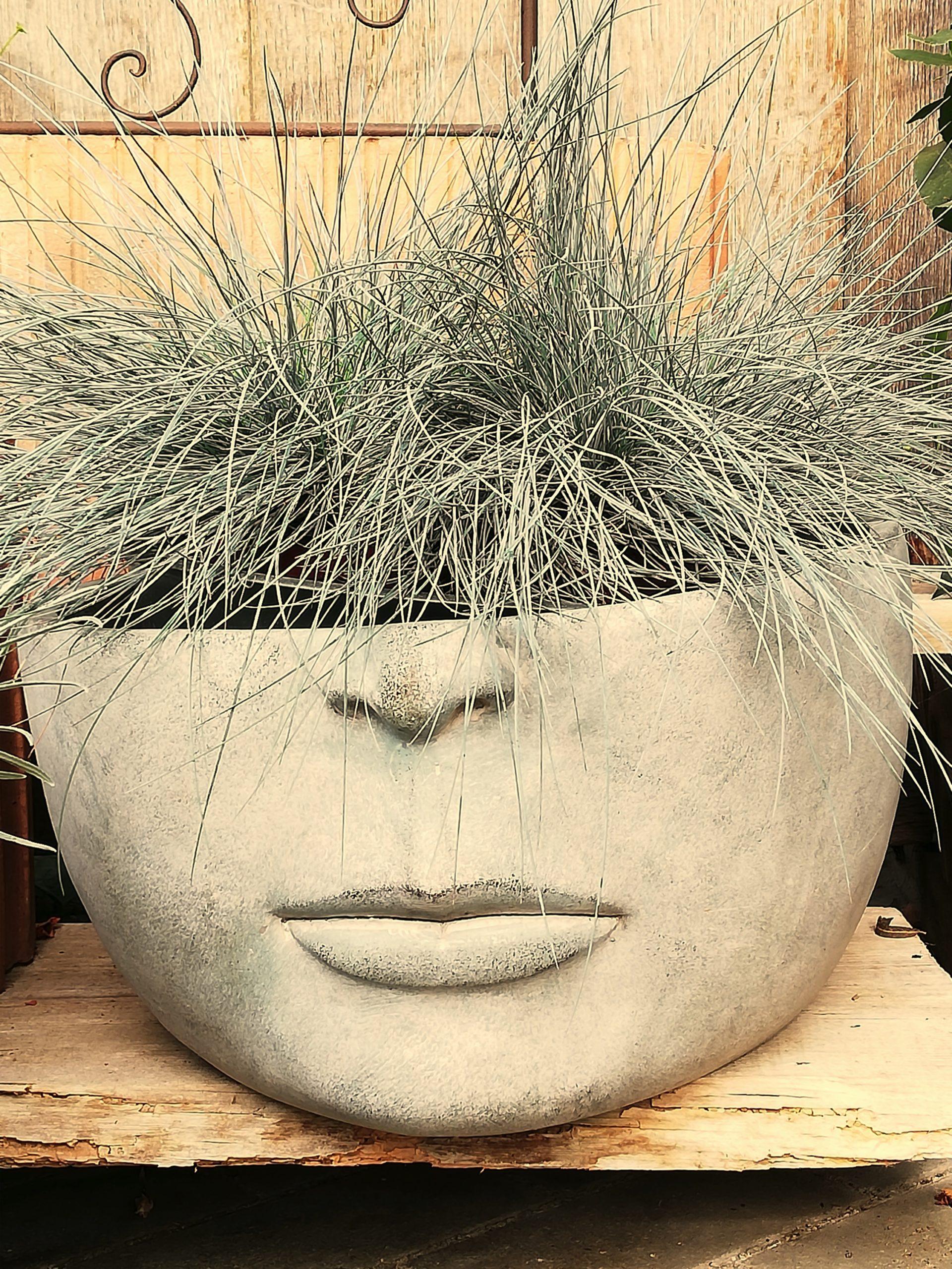 Nur Gras Im Kopf