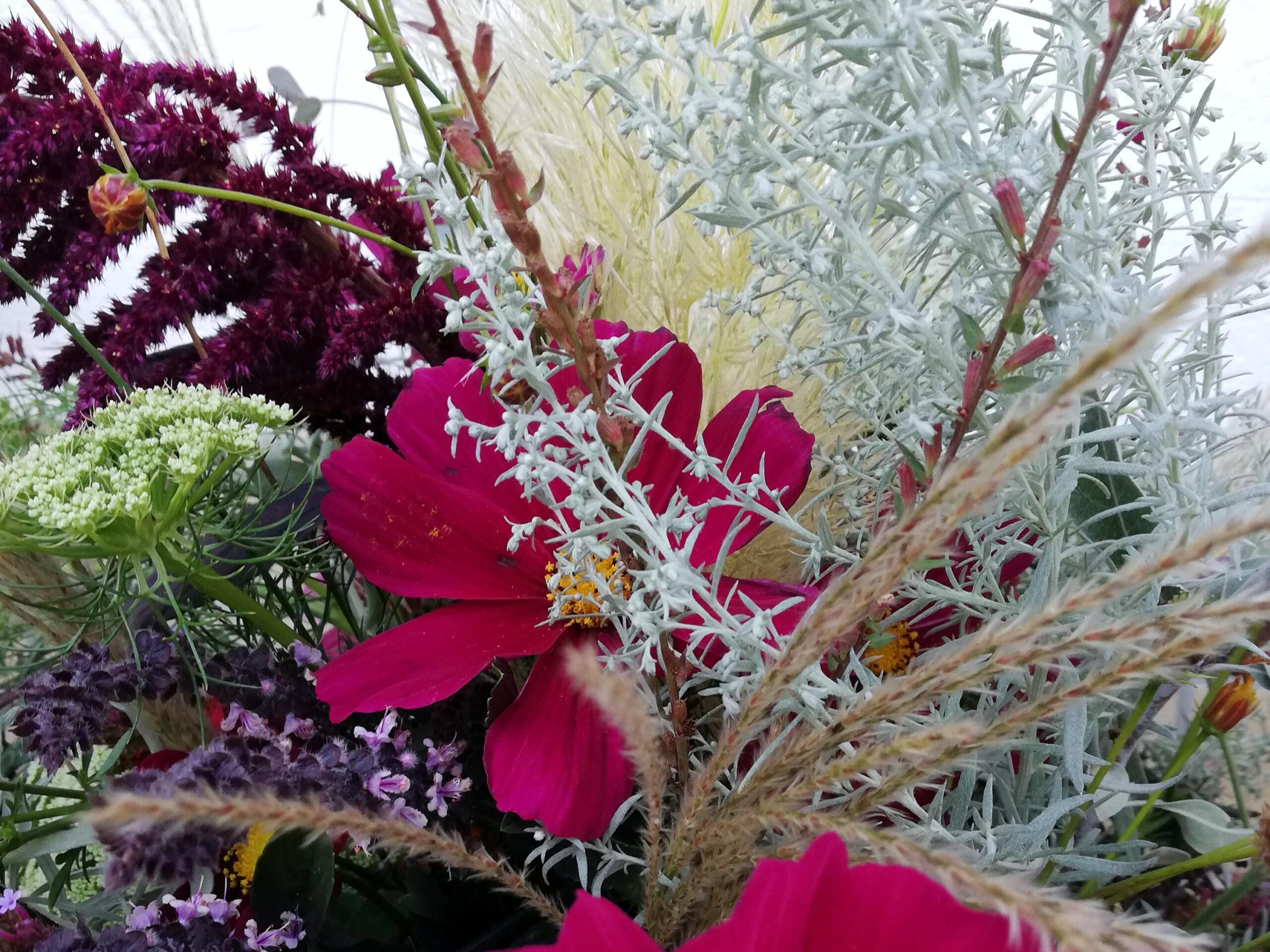 Sommerlicher Blumenstrauß Detailansicht